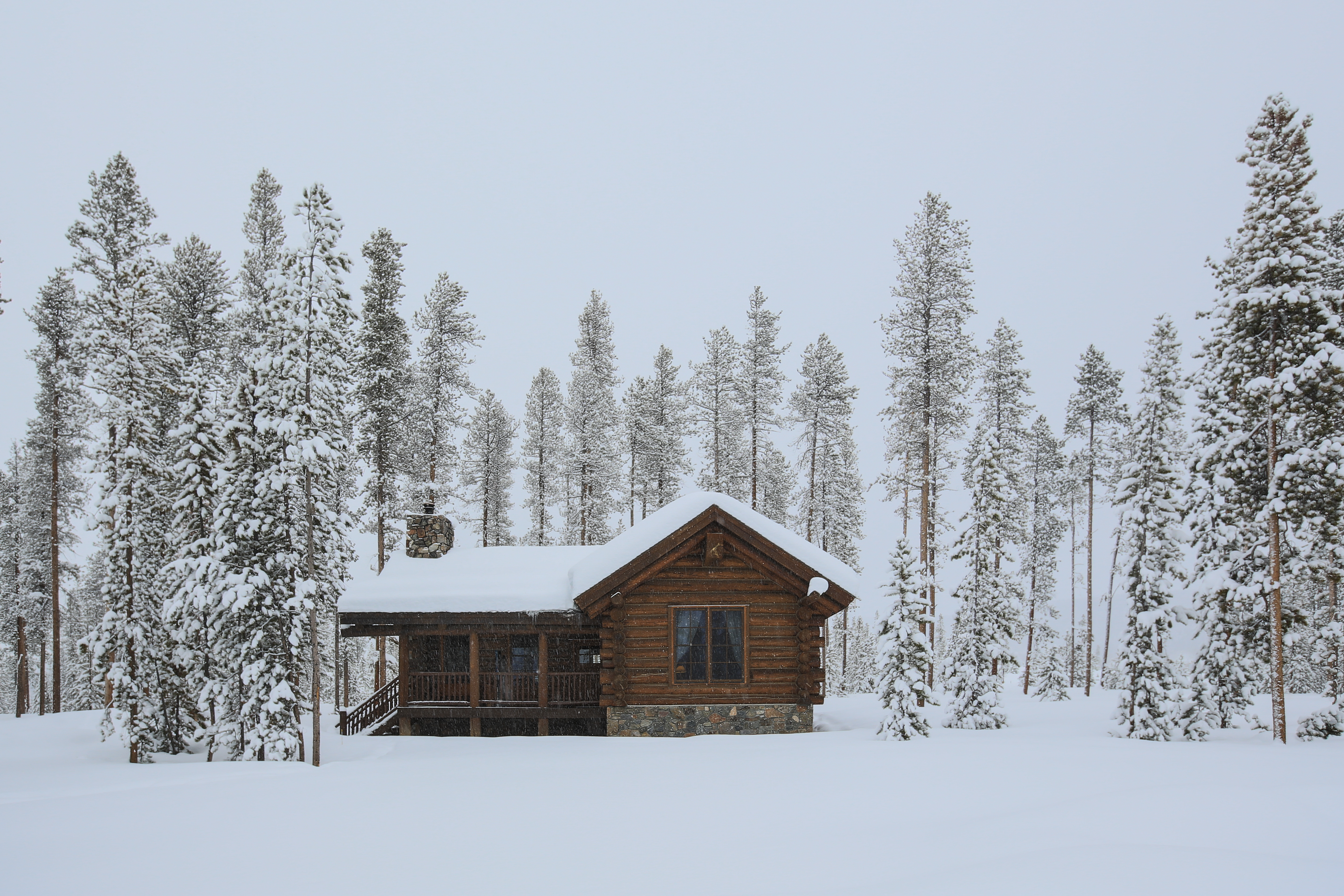 Log Cabin in the forest and covered snow