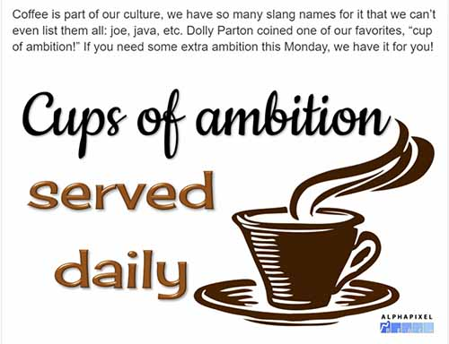 "coffee shop ""cup of ambition"" social media post"
