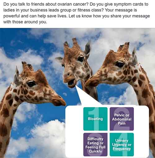 Non Profit Industry, Social Media Campaign